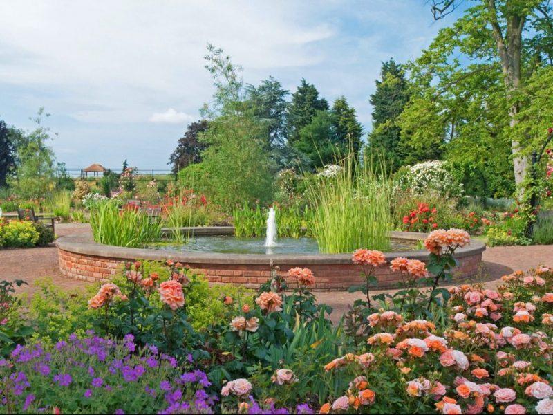 pond in Royal National Rose Society rose gardens