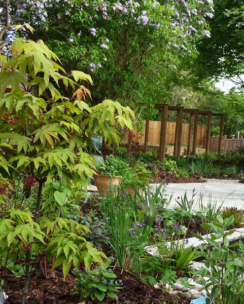 contemporary pergola and garden paving