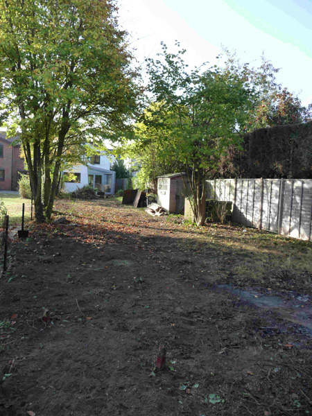 contemporary garden before build