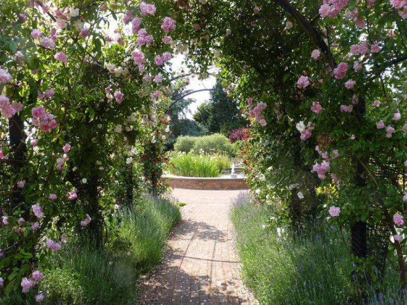view through the rose pergola designed for the Royal National Rose Society rose gardens