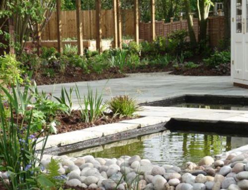 Contemporary Garden, St Albans