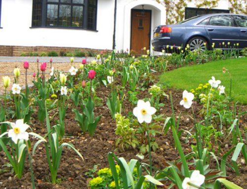 Front Garden, Radlett